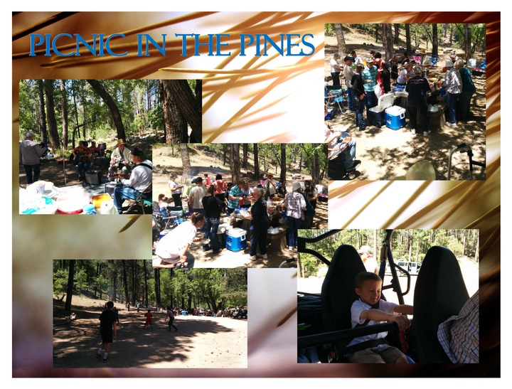 Picnic%20in%20the%20pines-web