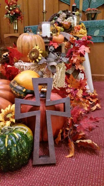 Fall-web