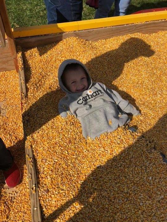 Corn%20maze%202018%20(2)-web