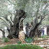 Gethsemane-556051_1920_scaled-thumb