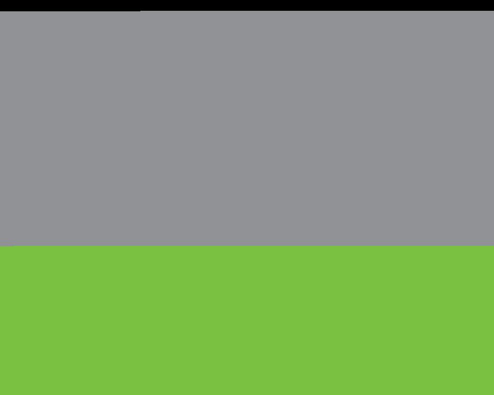 Meraki Partner Logo
