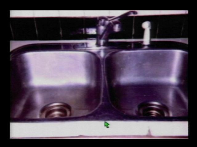 Mould Under The Kitchen Sink