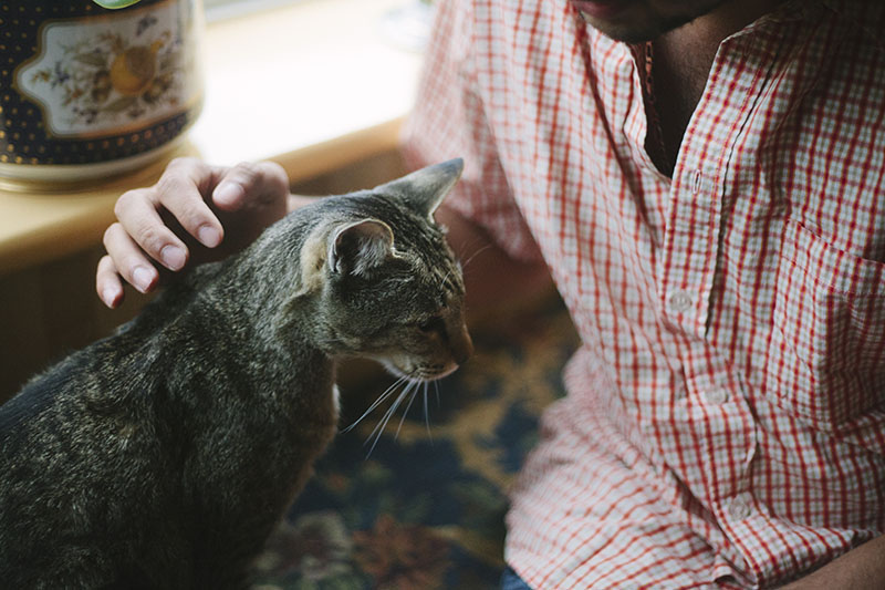 thomas-xavier-petting-cat-sammy-cute-kitty