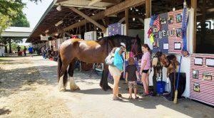 Queen Anns County Fair