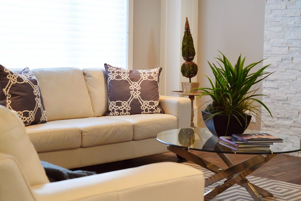 Staged living room with plant, books on coffee table, accent pillow
