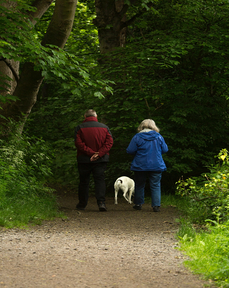Assisting seniors with retirement planning allows them to have an enjoyable retirement.