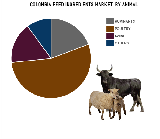 Columbia feed Ingredients Market | Size | Future (2017 – 2022)