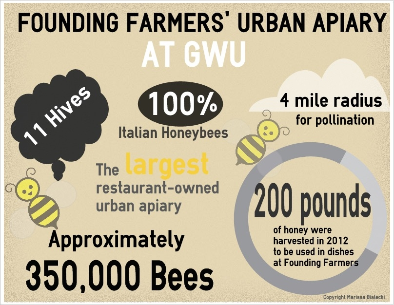 Founding_Farmers_bees title=