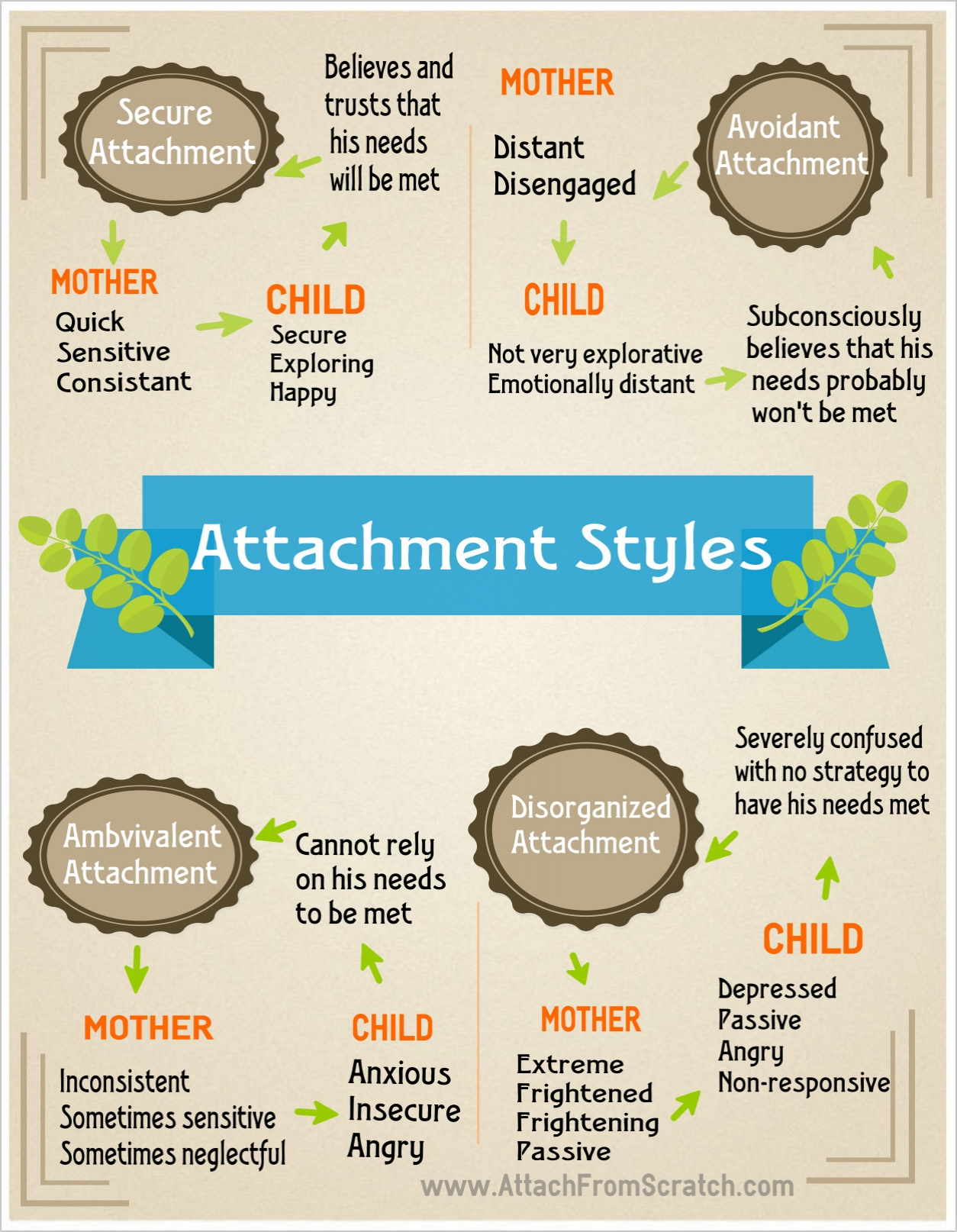 importance of early infant attachment and child development Attachment theory is founded on the idea that an infant's early relationship with their caregiver is crucial for social and emotional development it is an old theory, born during the 1950s but .