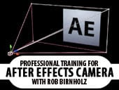 Toolfarm Professional Training for the After Effects Camera:  Toolfarm Expert Series