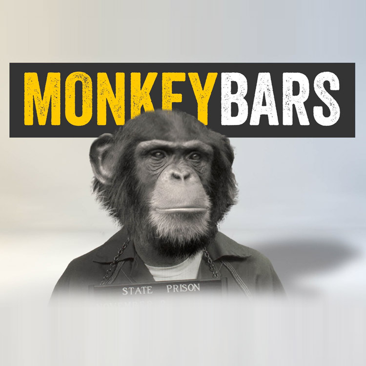 MonkeyBars for After Effects