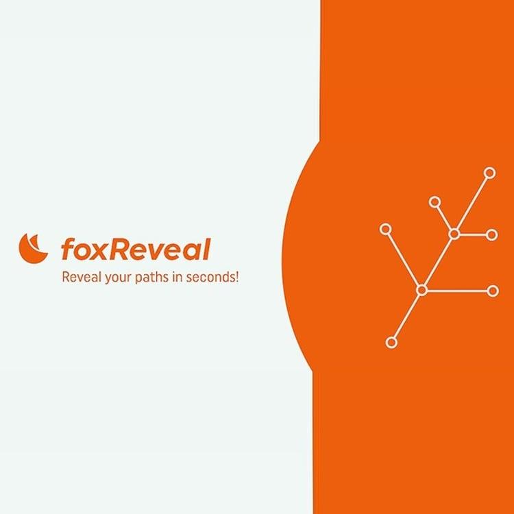 foxScripts foxReveal