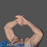 NoneCG Adult Male Arms and Hand Rigged 3D Model