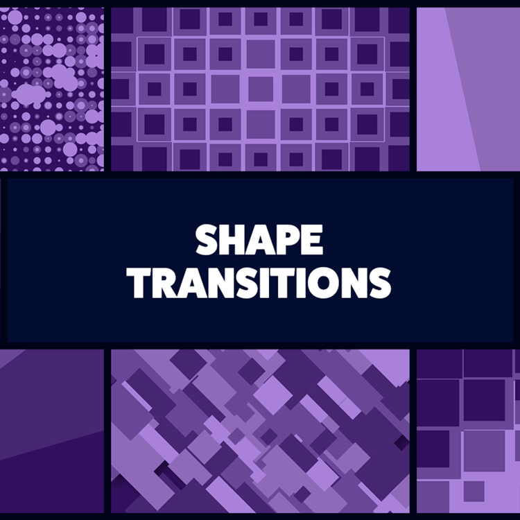 Mister Horse Shape Transitions for Animation Composer