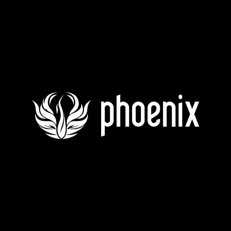 Chaos Group Phoenix FD - Academic