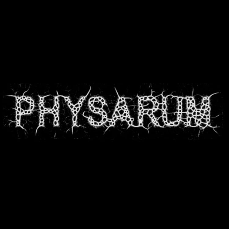 Zaebects Physarum