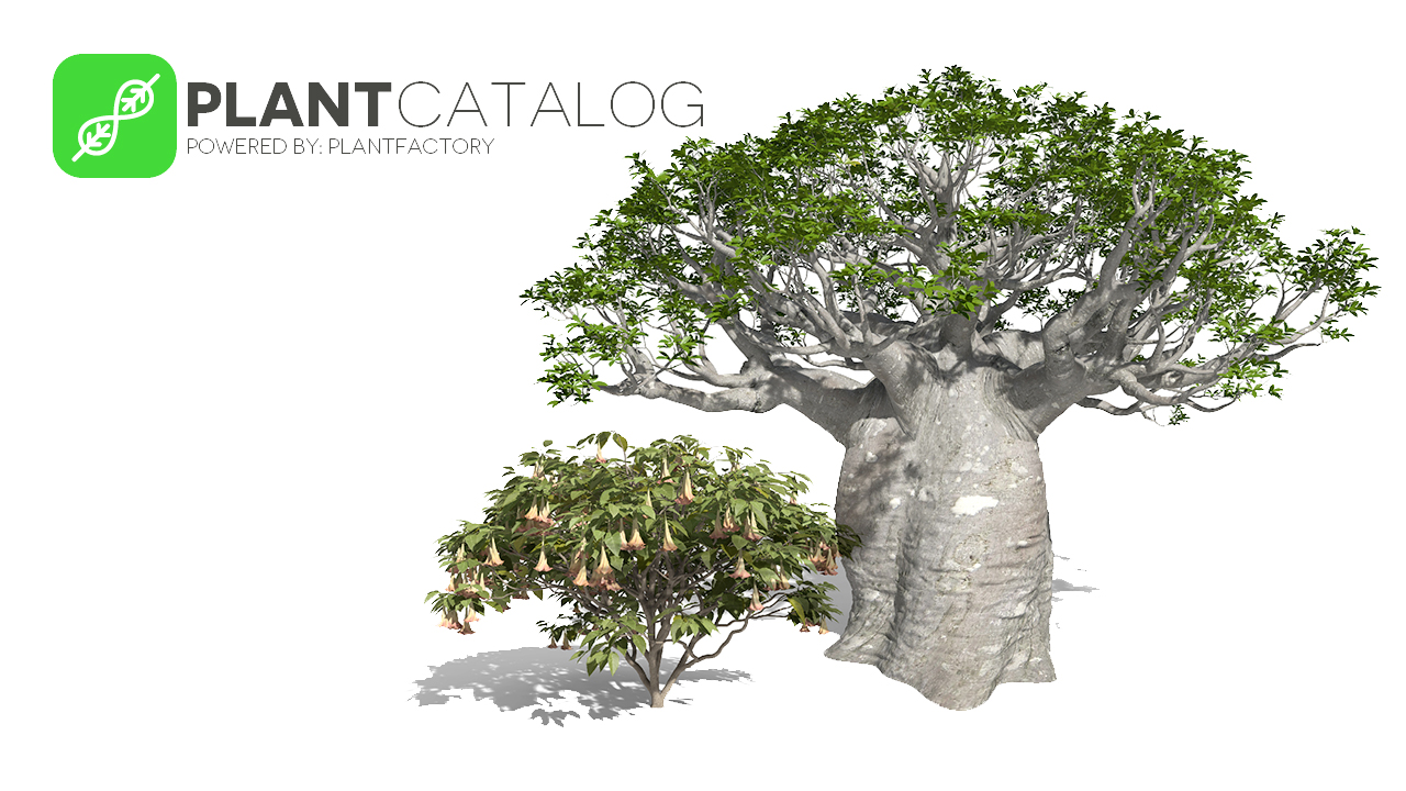 e-on Software PlantCatalog Creator