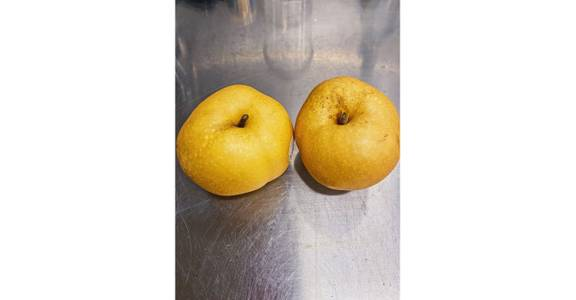 Korean Pear, lb. from Global Market in Madison, WI