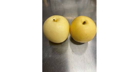 Sand Pear, lb. from Global Market in Madison, WI