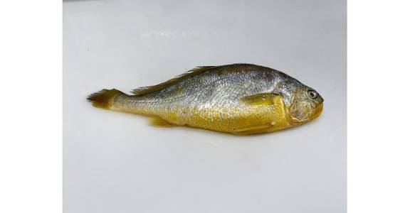 Yellow Croaker, lb. from Global Market in Madison, WI
