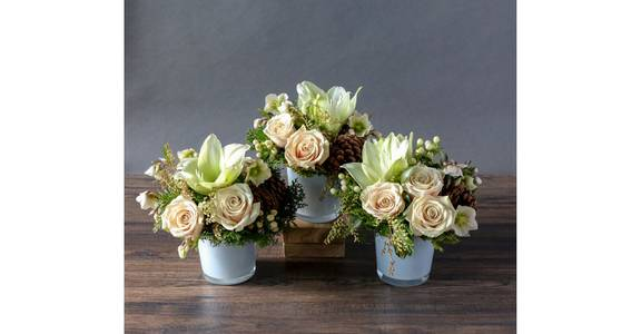 Seasonal Floral Trio from Red Square Flowers in Madison, WI
