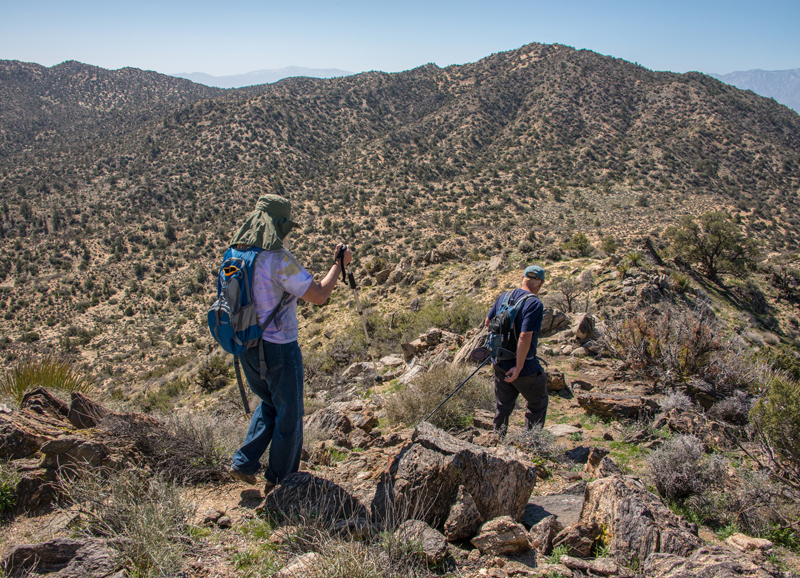16 Incredible Desert Hikes in Joshua Tree