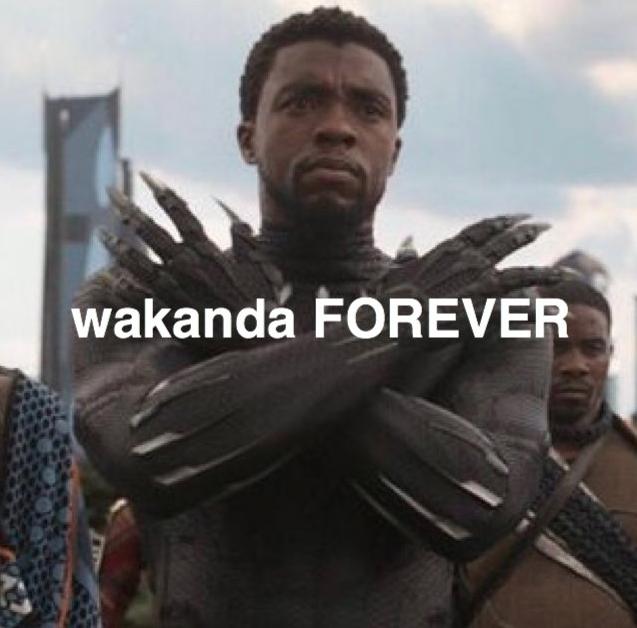 Wakanda Forever Has Broken Chadwick Boseman - Funny ...