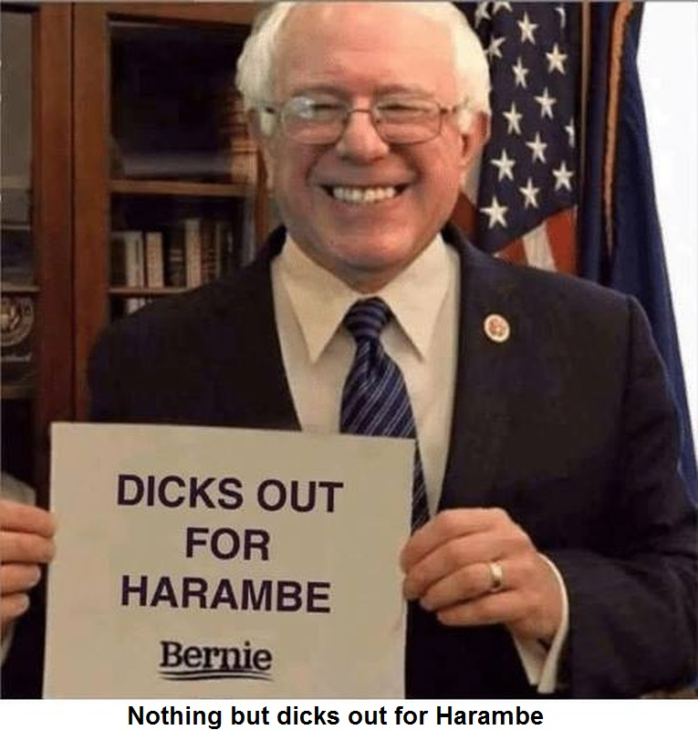 dicks out for harambe meme bernie