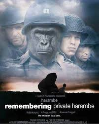 remembering private harambe meme