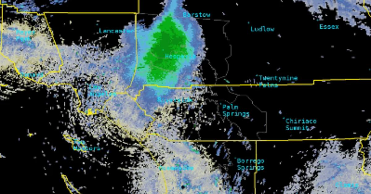 Radar image of an 80 by 80 mile swarm of lady bugs over southern california.