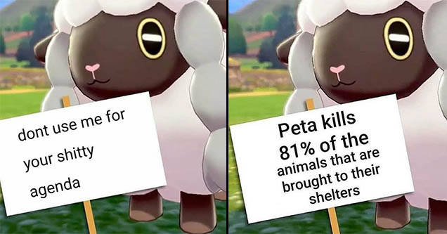 Wooloo PETA memes with the new Pokemon Woolloo.