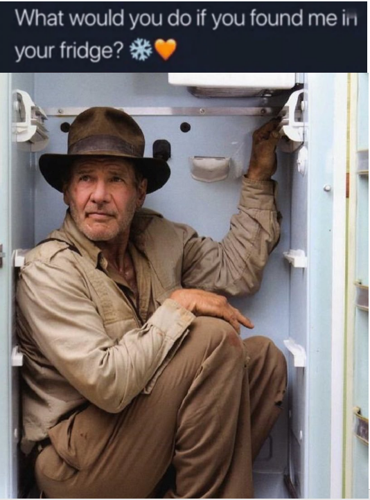 Meme - Indiana Jones in a fridge - Belle Delphine