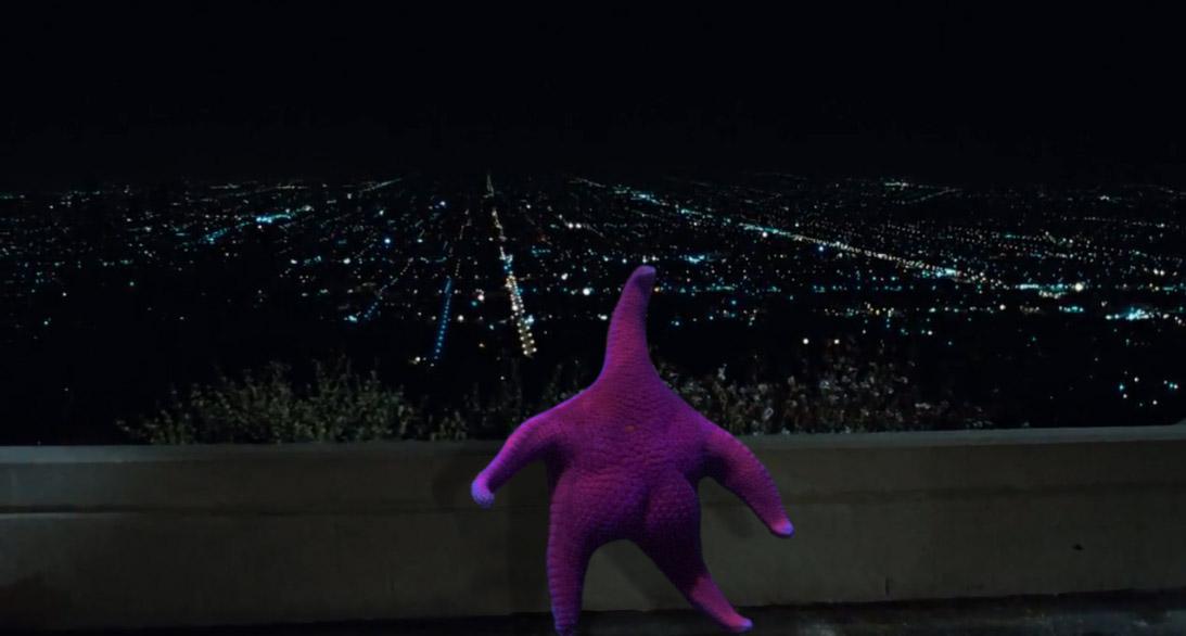 Thicc Starfish meme - night sky
