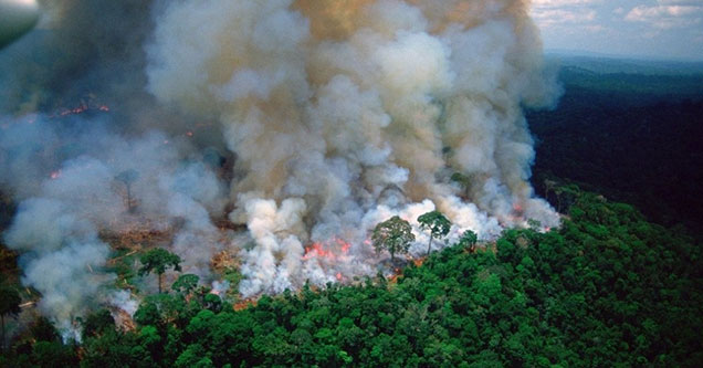 The Amazon Rainforest has been burning for the last few weeks and no one is talking about it