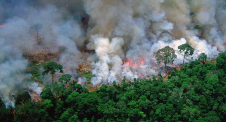 A photo widely used to depict the fires in the Amazon Rainforest has been found to be 30 years old.