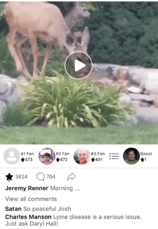Screenshots of troll posts on the now deleted Jeremey Renner App