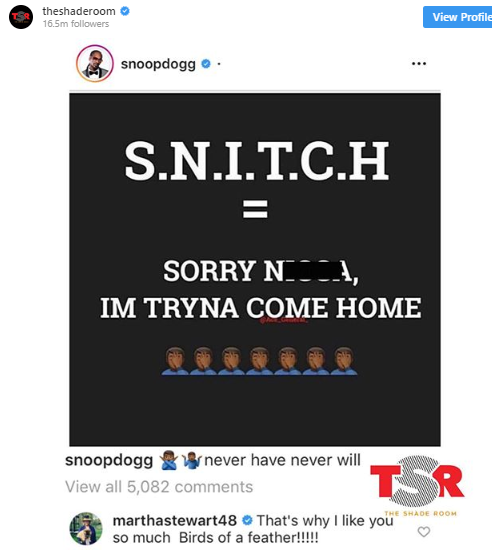 theshaderoom snoopdogg S.N.I.T.C.H. = Sorry n***a I'm tryna come home never have never will marthastewart48 that's why I like you so much. Birds of a feather!!!