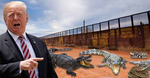Photoshopped image of Trump with alligators at border wall