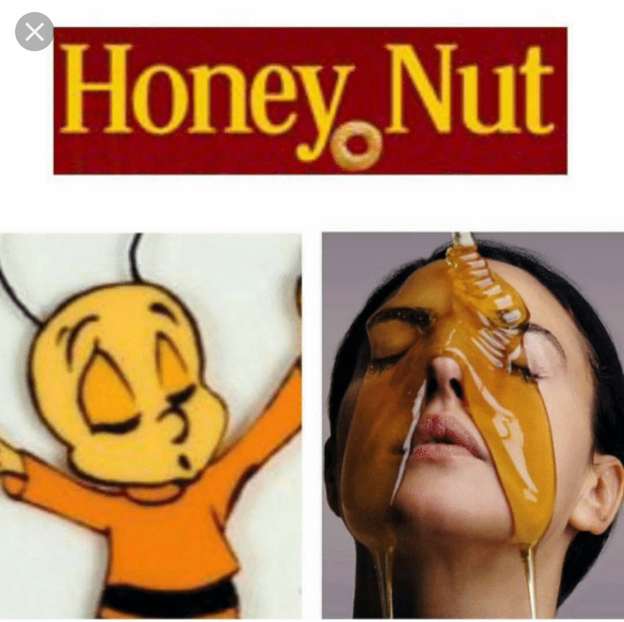 Honey Nut meme