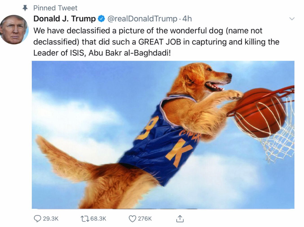 Declassified dog memes -  fake trump tweet