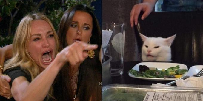 Woman Yelling at a Cat meme template.