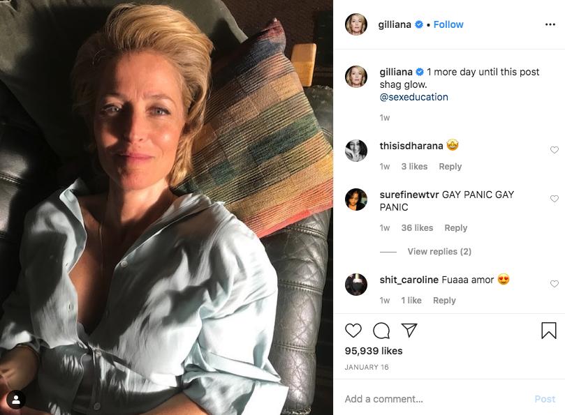 Gillian anderson instagram post