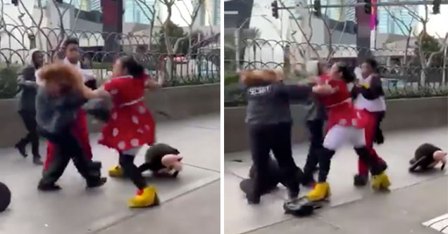 It's not every day that a Disney mascot getting into a physical fight while on the job, in fact I'm not sure I've ever seen a video of a Disney mascot having a breakdown while on the job. Guess their is a first time for everything, right?