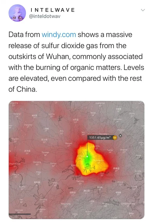 more coronavirus conspiracies explained amid a growing epidemic | pic of a cat with face mask | data from windy.com shows a massive release of sulfur dioxide gas from the outskirts of wuhan commonly associated with the burning of organicmatter levelsare elevated even compared with the rest of China