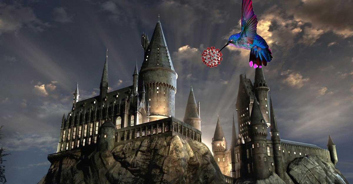 coronavirus and a hummingbird at Hogwarts
