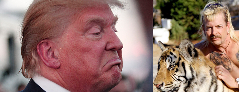 donald trump joe exotic tiger king