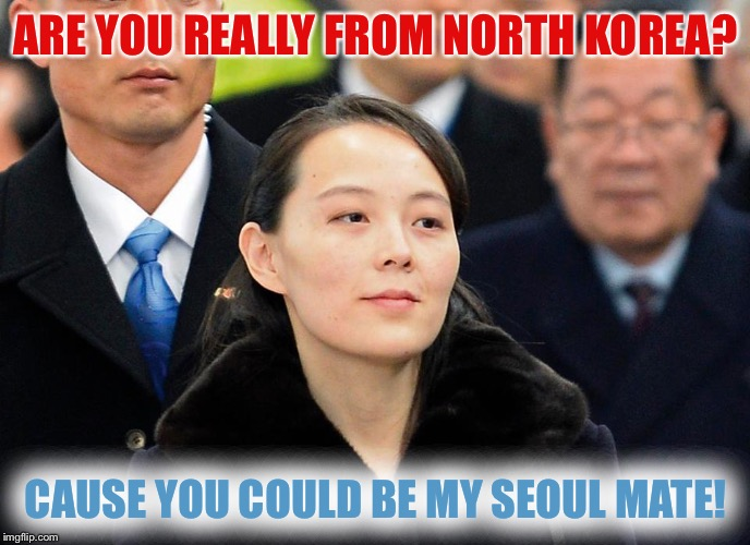 are you really from north korea? cause you could be my seoul mate!