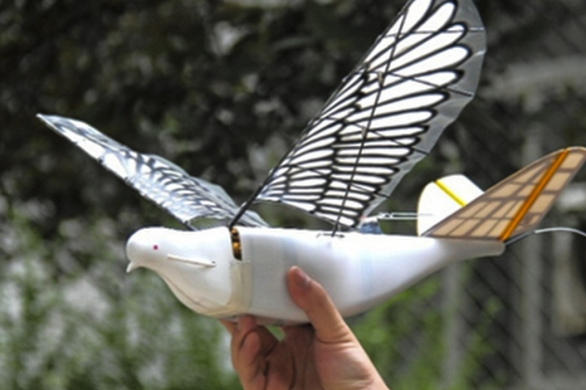 Chinese Bird Spy Drones named 'Doves' have been crested to patrol Chinese cities.