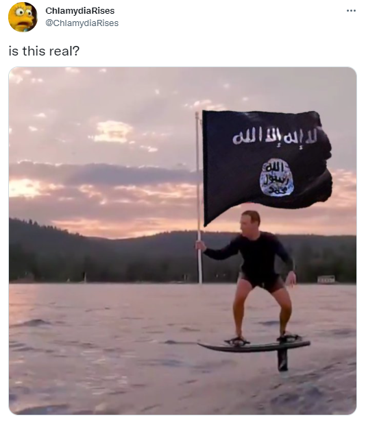 zuckerberg flag surfing with ISIS flag