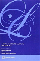 Practitioner's Guide to Solvency II